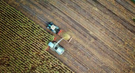 agriculture from space